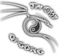 TaiChi in QiGong Šola Artelis Marko Preston