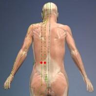 Ocean vitalnosti (B 23 in B 24 - Mehur), Prednosti: Blaži akne, ekcem in modrice na telesu.