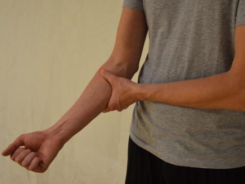 Roka treh milj (Li 10 – Debelo črevo)