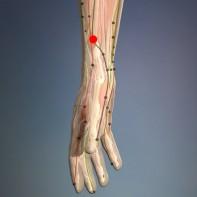 Zlomljeno zaporedje (Lu 7 – Pljuča)