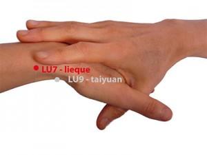 Zlomljeno zaporedje (Lu 7 – Pljuča) Lokacija: To točko boste našli, če sledite zunanji strani palca dva prsta širine pod zapestjem v vdrtini med dvema tetivama.