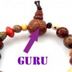 guru sveto seme