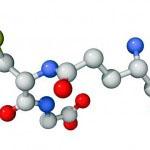Je kombinacija aminokislin in močan antioksidant, ki varuje telo pred strupi
