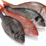 Kadar se odpovemo mesu, je dobro za zadostno mero beljakovin zaužiti ribe.