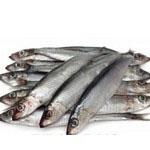 ribe proti luskavici