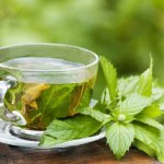 poprova meta čaj