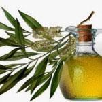 olje čajevca proti herpesu