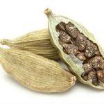 Že stari Egipčani so uporabljali semena kardamoma za čiščenje zob.