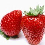 Jagode so med najpogostejšimi sadeži, ki povzročajo alergijo.