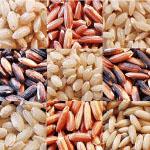 rjav riž