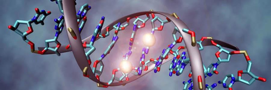 molekularne spremembe v genih