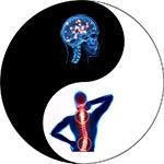 jin jang telo in um hrbtenica