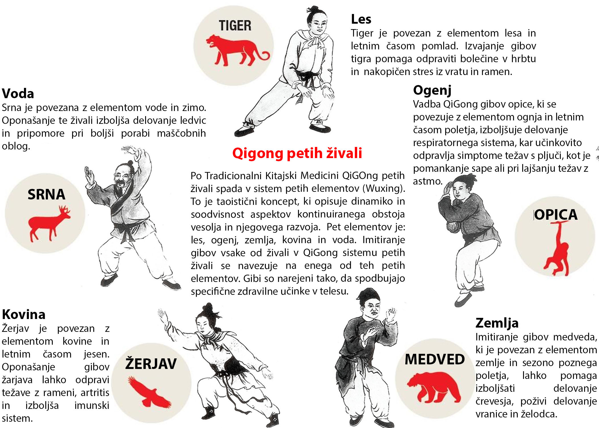 5 živali
