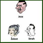 Sedem čustev – Čustva in bolezni telesa