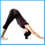 Joga, Tai Chi ali Qi Gong. Katera vadba je najbolj primerna za vas?